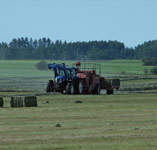 Finally getting some hay off west of Innisfail,AB - July 22, 2009