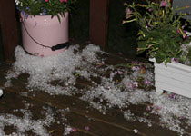 Not as much hail at home - Aug 21, 2009