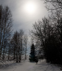 Full snow moon turns night to day - Mar.1, 2010
