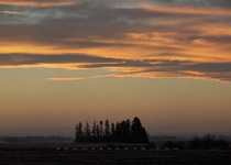 Wavy sunset over western Alberta - Nov.4, 2010