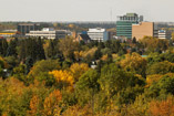 Autumn colors in Red Deer, AB - Sept.25, 2011