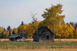 Rustic fall afternoon setting in the Kevisville area - Oct.10, 2011