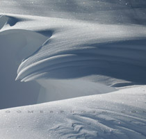Snow sculptures fill the ditches of southern Alberta - Dec.7, 2009