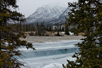 North Saskatchewan River in the Kootenay Plains - Jan. 14, 2012
