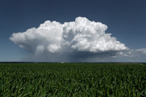 Thunderstorm east of Carstairs, AB - July 6, 2012
