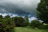 Darkling shadows roll over the yard, July 24, 2012