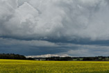 Funnel cloud peeks out the bottom of a weak storm north of Stauffer, Alberta - July 28, 2012