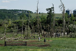 Tornado damage south of Cremona, Alberta - July 29, 2012